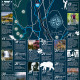 50 Things to Do in Ashevillee NC Infographic