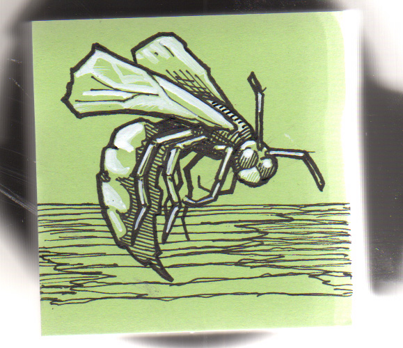Post-It Note Illustration - Wasp