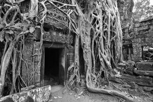 angkor watt background photo