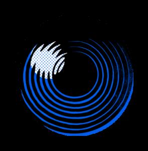 Blue Dozen Design Branding