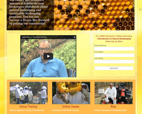 WordPress Site Design for Honey Bee Steward Asheville