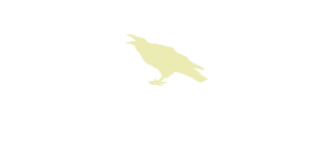 Marketing & SEO in West Asheville, NC