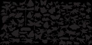 bug background pattern design