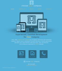 Choose Your Company Website Design