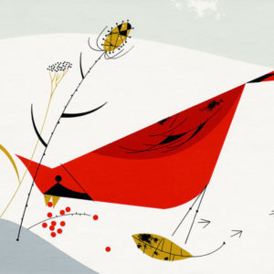 RED CARDINAL CHARLEY HARPER