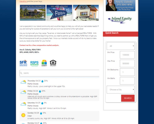 Web Design for Ana G. Zalesky Real Estate