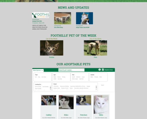 Web Design for Foothills Humane Society