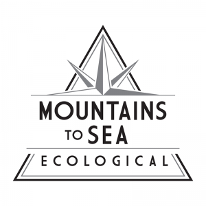 Mountains to Sea Ecological Logo Design