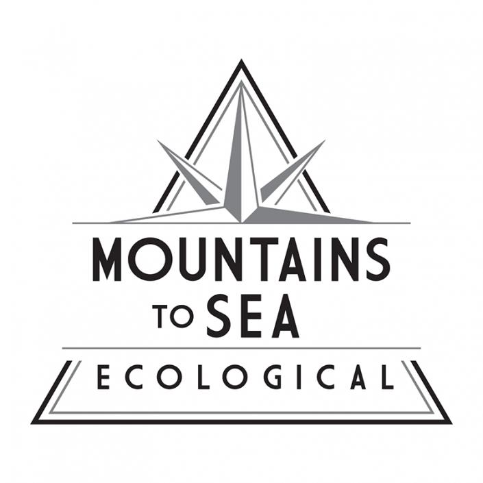 Mountains to Sea Ecological Logo Design